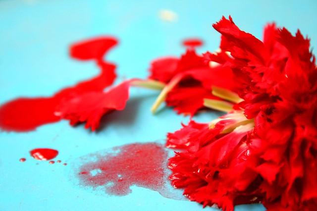 'Blood'y 'Blossom'