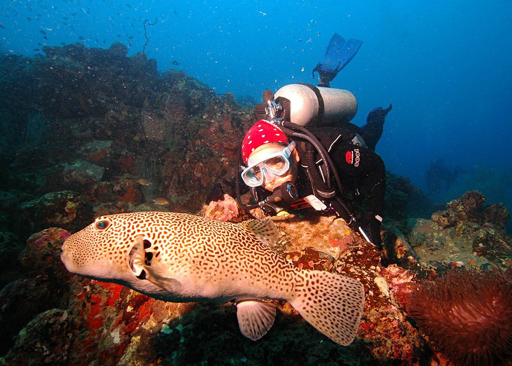 877777648 5f1076fcdc b - Spot Keren di Pulau Perhentian Malaysia