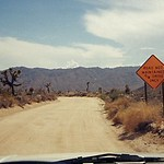 joshua_tree_sign