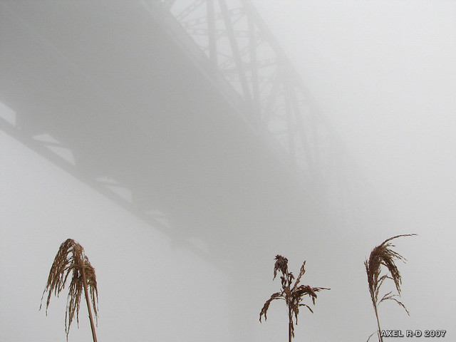 A bridge to nowhere (5)