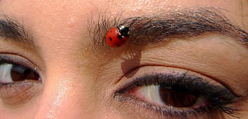 Let's Use Natural Jewels | by Hamed Saber