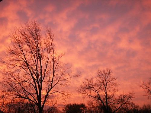 trees sky usa clouds sunrise wow spectacular us newjersey cool unitedstates great nj dramatic 2006 monmouthcounty bayshore brilliant konicaminolta unionbeach views100 dimagex1 neloesteves zip07735