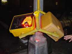 NYC - Crosswalk Casualty