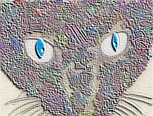 A Psychedelic Kitty