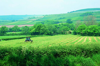 Organic farming   by Soil Association