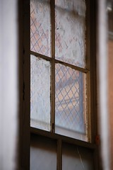 Out the window, through a broken window