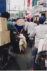 Vietnam by Bill(iudshi8uf)