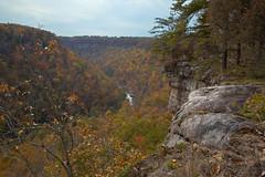 Little River Canyon Alabama   by Southernpixel - Alby Headrick