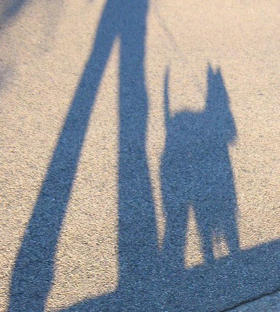 Wee Westie Shadow