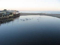 Capitola | by FullCalendar
