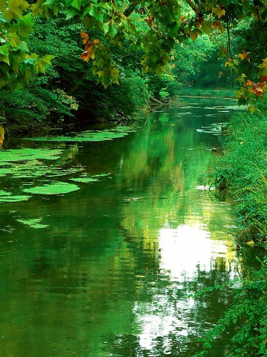 More Reflections on the Canal | by Vicki's Pics