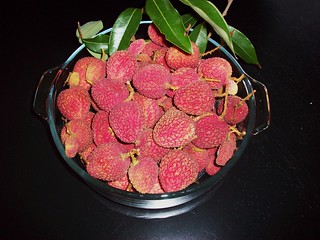 Lychee Feasting Part I 001