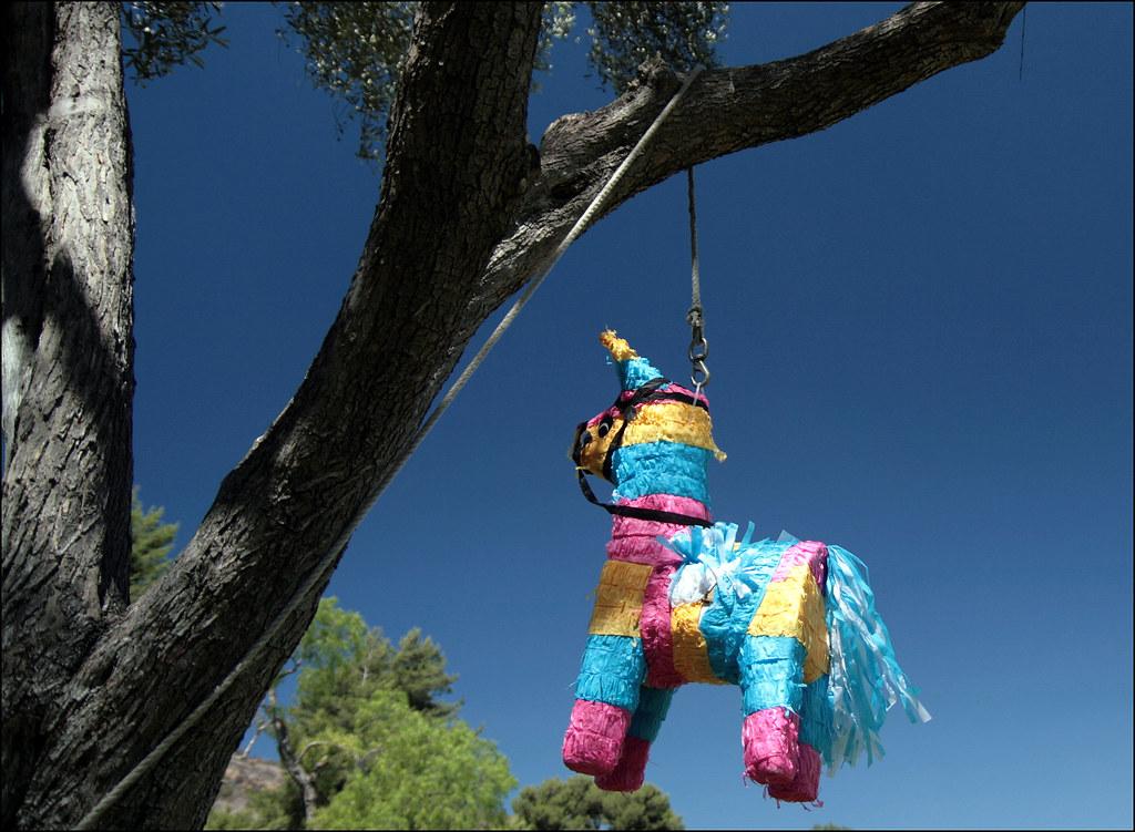 Viva Piñata   I'm innocent, I didn't do it  No one believes