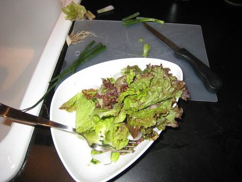 Lettuce | by edkohler