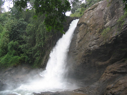 Soochipara Falls 1   by Kerala Album Wayanad