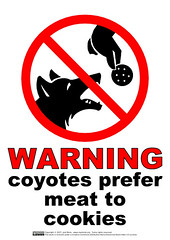 warning_coyotes_prefer_meat_to_cookies | by guppiecat