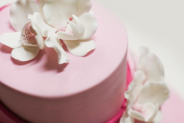 Planet cake 104