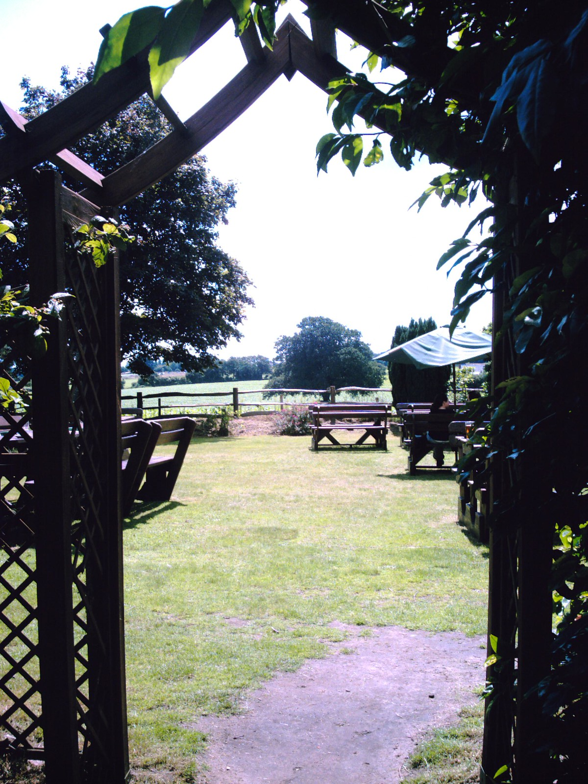Milford to Haslemere Welcome to the Beer Garden! The recommended Pub for lunch once more: The Three Horse Shoes, Thursley. D.Allen Vivitar 5199 5mp