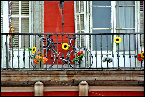 bici mayor minor cessat | by [auro]