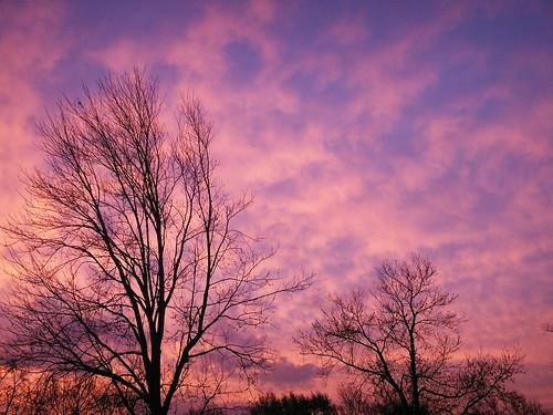 trees sky usa beautiful clouds sunrise wow wonderful spectacular us newjersey nice pretty unitedstates gorgeous awesome nj 2006 monmouthcounty bayshore konicaminolta unionbeach views400 dimagex1 neloesteves zip07735