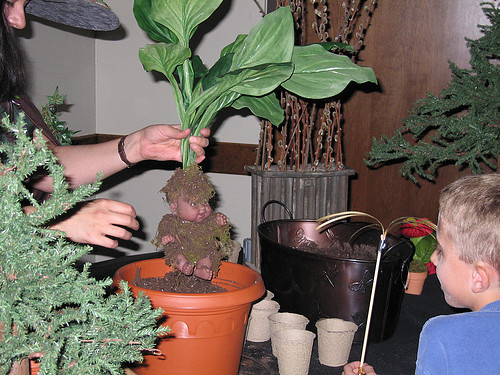 Professor Sprout Demonstrates How To Plant A Mandrake Har Flickr