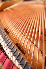 Steinway L Strings | by Andrew Morrell Photography