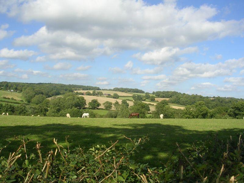 Weald view Balcombe circular.