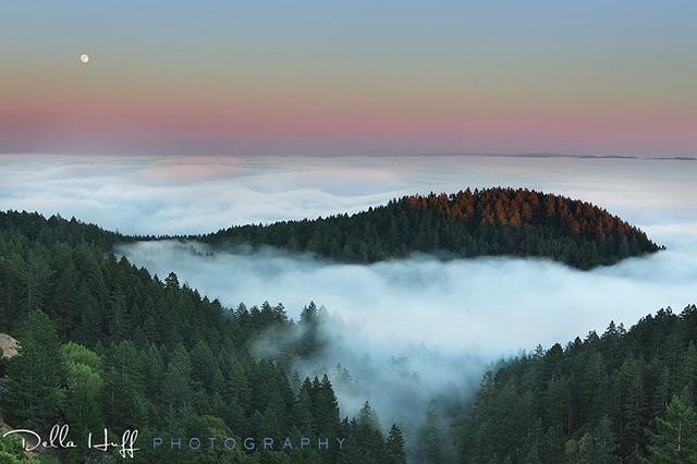 Sweet Stillness, Mt. Tamalpais