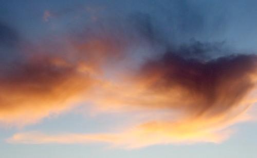 Sky   by cheetah100