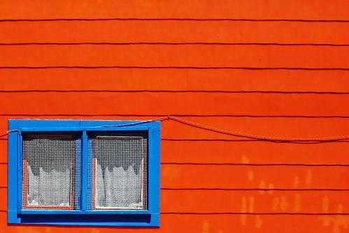contrast   by Darwin Bell