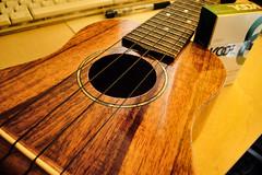 ukulele   by [cipher]