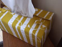 Tissue box cover   by birds & trees