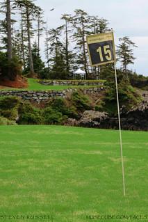 WYNDANDSEA Golf Club - 15th Hole looking back toward Tee