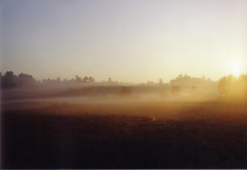 morning sky orange sun slr film field grass yellow fog sunrise 28mm foggy wideangle olympus om zuiko om1 olympusom1