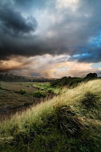 sunset sky field landscape hawaii atmosphere maui haleakala pineapple upcountry makawao