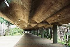 Los pasillos de la UCV