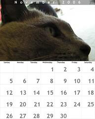 November calendar | by Dr Stephen Dann