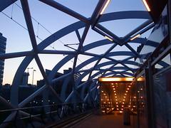De Netkous station, Den Haag