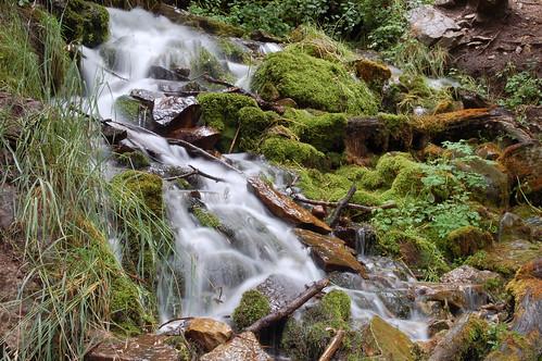 water creek hiking trail hortoncreek