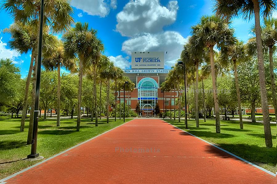 USF Baseball Stadium - South Florida Bulls | Stadium Journey