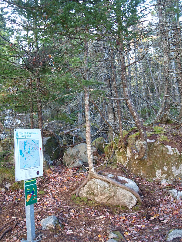 Bluff Wilderness Trail