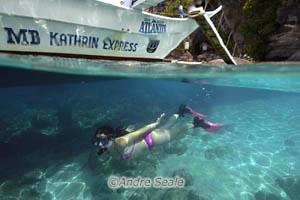 Snorkeller em Apo Island