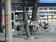 beijing bicicleta