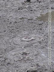 rotorua boiling mud