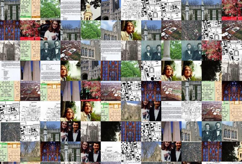 Princeton Random Images Montage