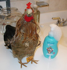 chicksoap