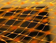 orange netting 1