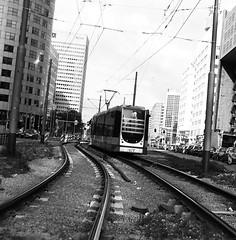rotterdam tram bw