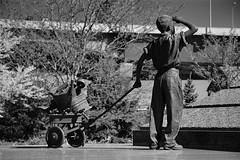 """young boy gathering scrap metal"" - victory '95 world war ii memorial"