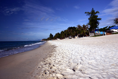 Samui Paradise